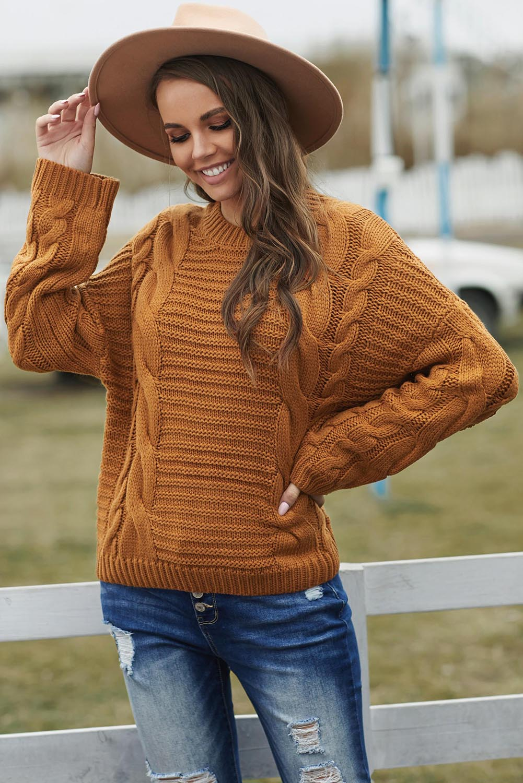 棕色圆领蝙蝠袖厚实保暖电缆针织毛衣 LC272906